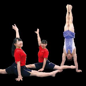 体操部[高等学校]写真