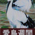平成29年度愛鳥週間ポスター  :特選(広島県知事賞)(高校:美術部)
