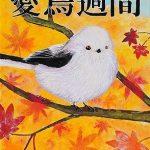 平成29年度愛鳥週間ポスター  :入選(広島県教育委員会賞)(中学:美術部)