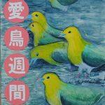 平成29年度愛鳥週間ポスター  :特別賞((公財)日本鳥類保護連盟広島県支部長賞)(中学:美術部)